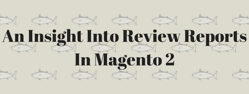 An Insight Into Review Reports In Magento 2