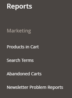 Marketing Reports in Magento 2